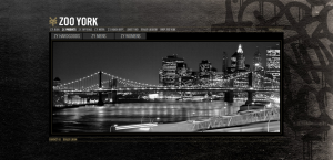 Zoo York Website
