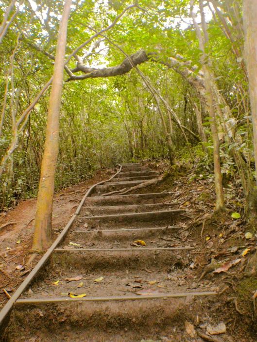Makeshift Stairs