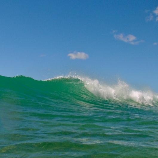 Waikiki Wave