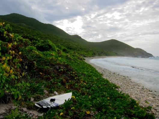 Post-Surf Wilderness