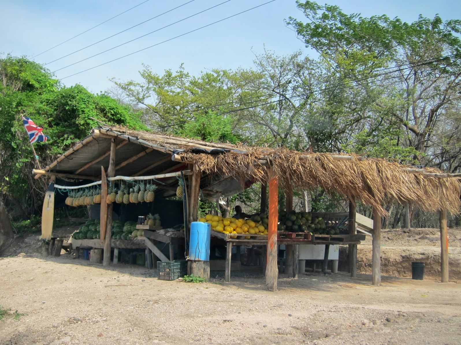 Convenience Store Along the PanAmerican Highway