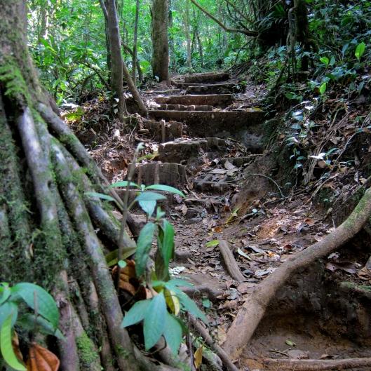 Hike Through Tenorio