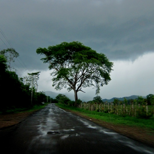 Rain on our Drive from Santa Theresa to Jaco